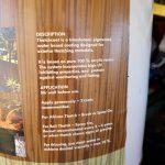 diy-gazebo-bali-huts-thatch-coat-0327_081302